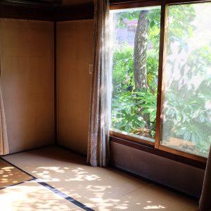 窓には大きな一枚ガラス